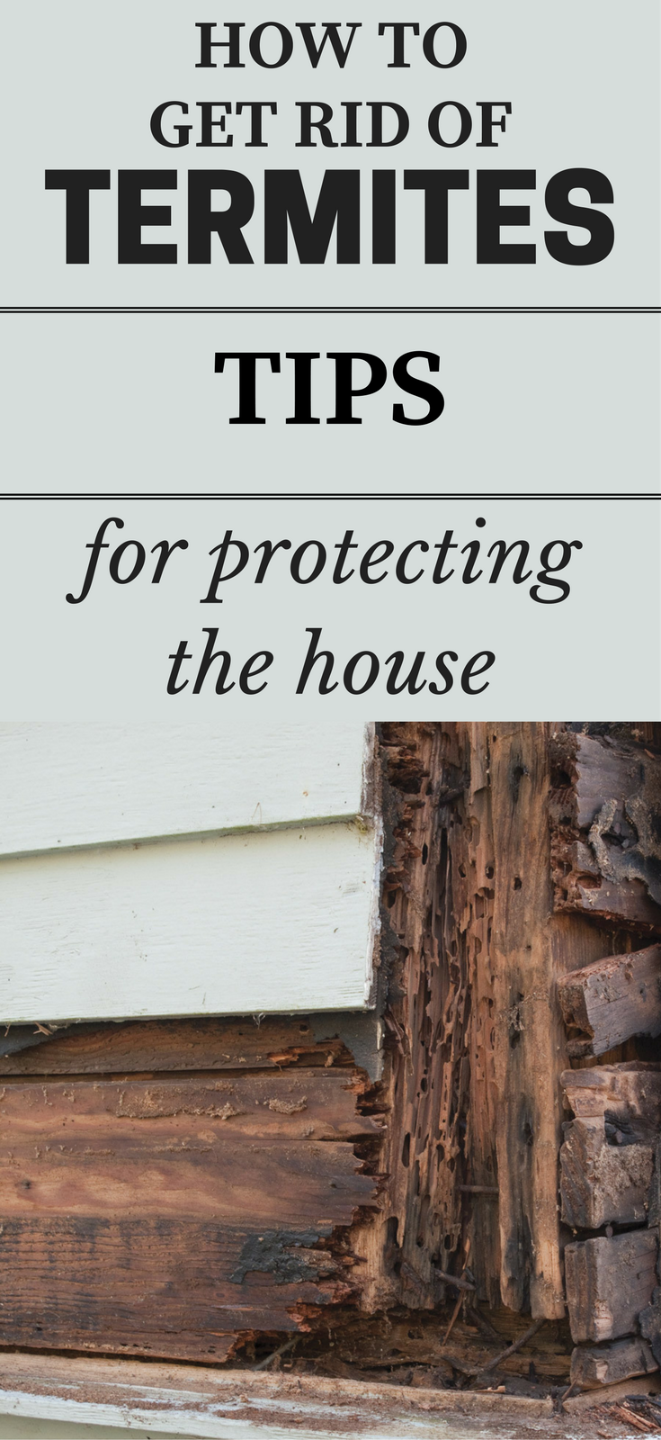 How To Get Rid Of Termites - Tips For Protecting The House